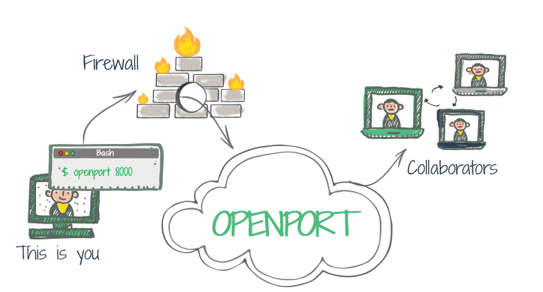 Openport - Easy and secure reverse SSH
